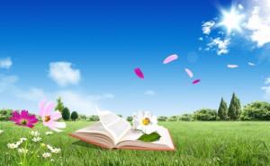 книга-лето-300x185
